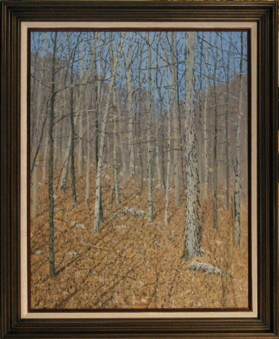 Woods in Winter - J. Vance Miller