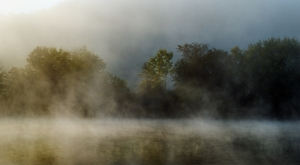 Mist-1